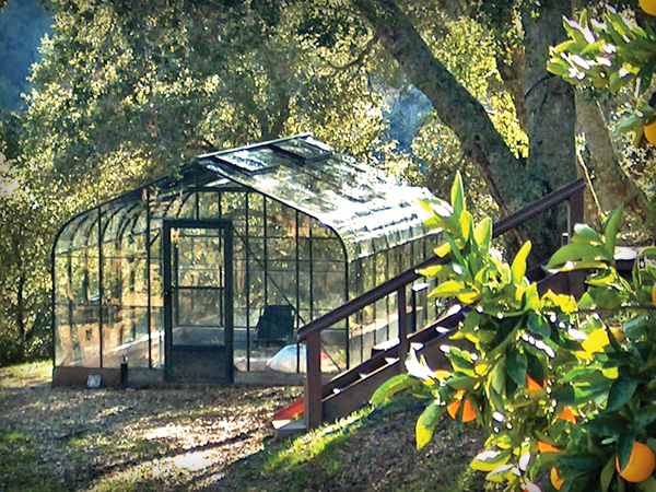 gallery-tmb-hobby-greenhouses.jpg